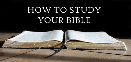 how to study the bible and The study bible gives you a wealth of resources from john macarthur and grace to you to help you understand and apply god's word featuring the english.