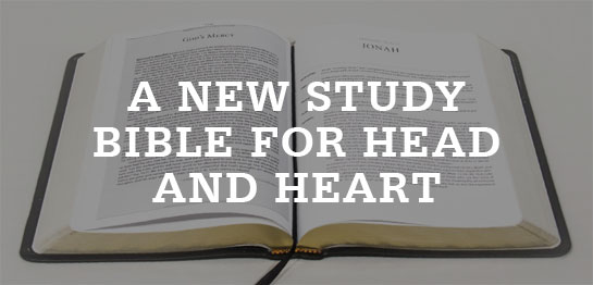 study bible for head and heart
