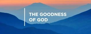 20150806_goodness