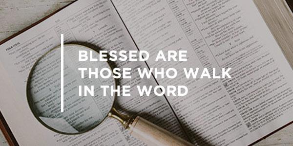 20151119_blessedwalk